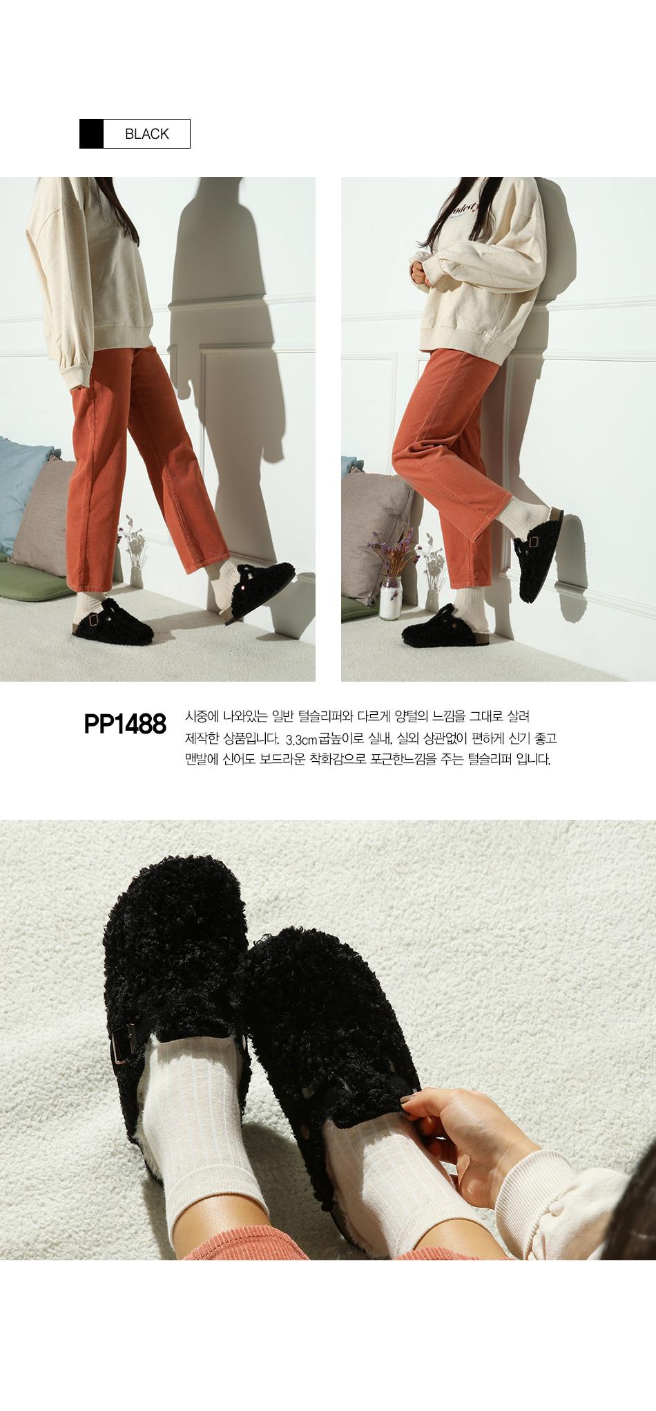pp1488_bk.jpg